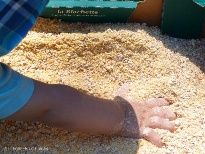 ground corn