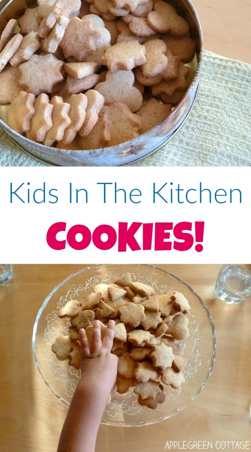 Late autumn is just perfect for baking at home with your toddler. It's too cold to play outside until evening, and the oven will add to the warmth of the place. And kids love working with cookie cutters!