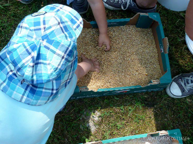 sensory activities for kids outdoors