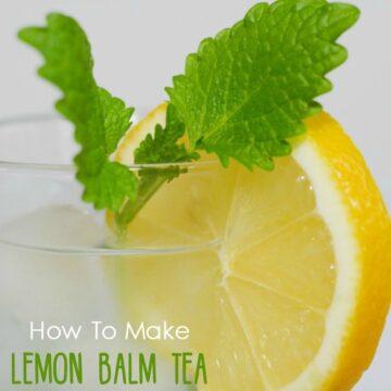 how to make lemon balm tea